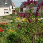 Garten Familie Ulbricht