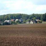 Blick auf Moosheim